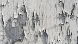 buyse paintings afbladderende verf Oudenaarde Gent Schilder